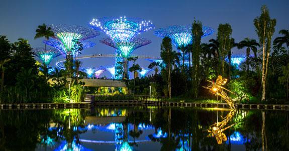 Singapore – Executive Oasis